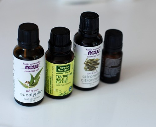 how-to-get-rid-of-tea-tree-oil-smell