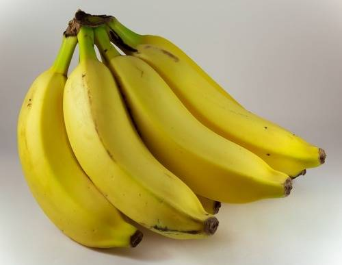 how-to-keep-fruit-flies-away-from-bananas
